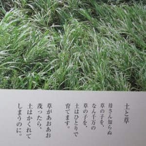 金子みすゞと娘・ふさえさんのその後、娘への愛のこもった『南京玉』