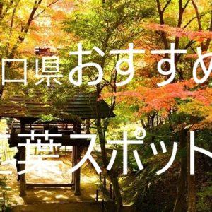 山口県の紅葉情報・穴場スポットや一度は行きたい名所の見頃を紹介!!